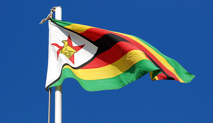 Zim requires 7% average growth rate